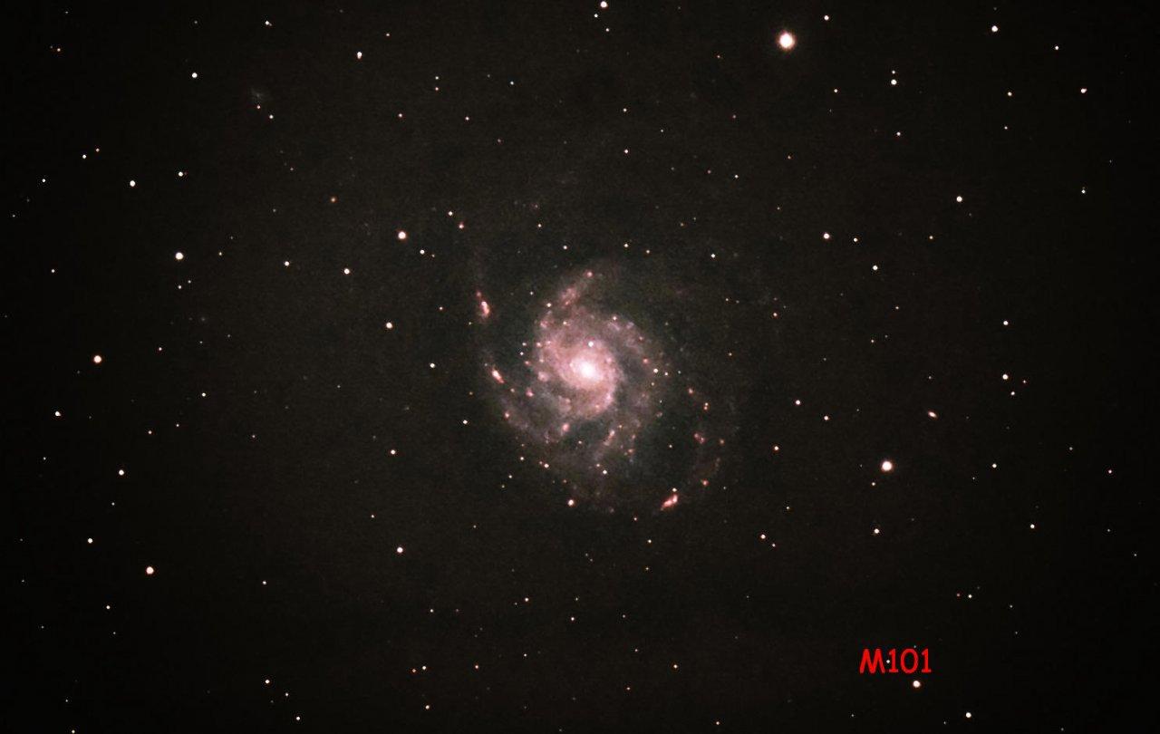M101190418Finsmall.jpg