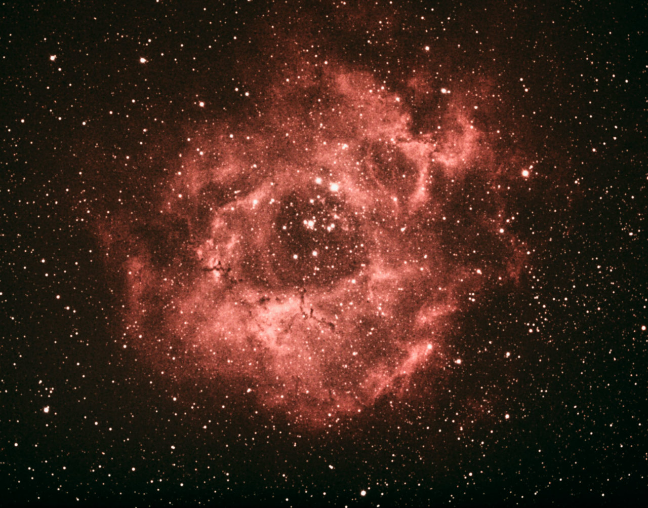 NGC2238FinishSmall.jpg