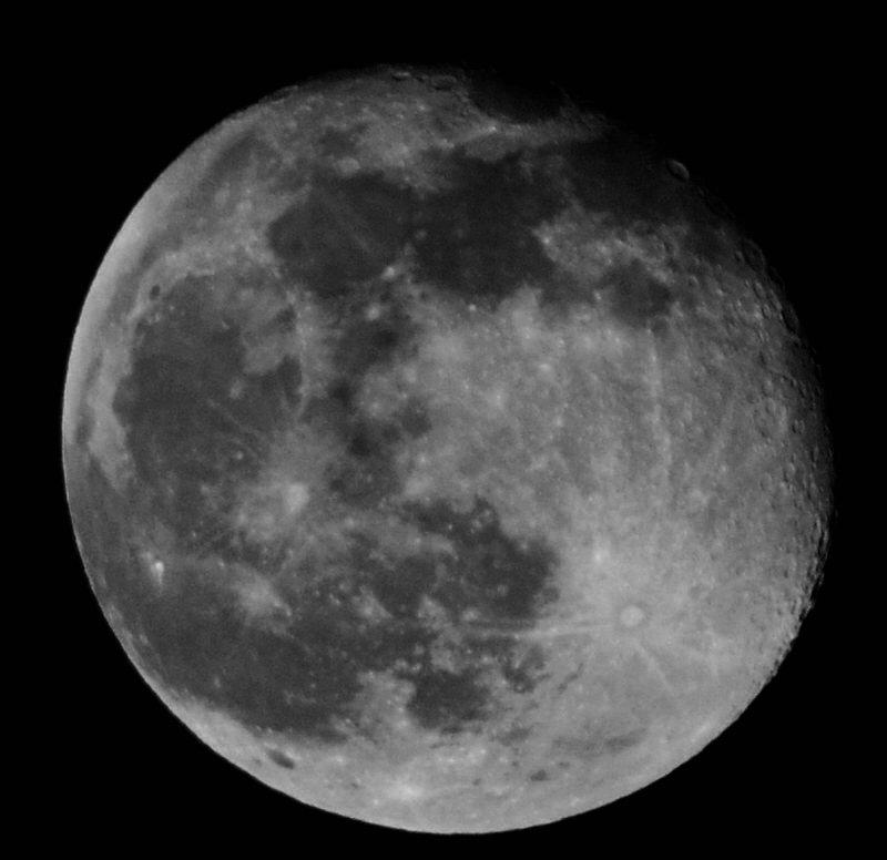 Sunny Phils  Moon