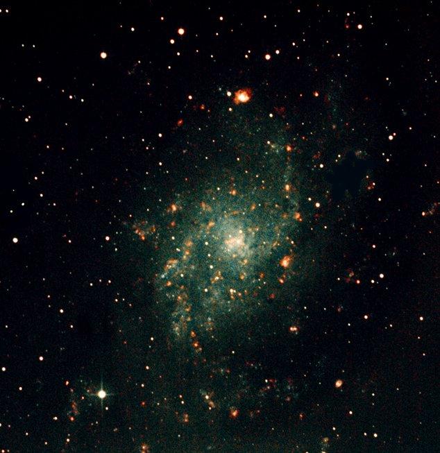 M33F031120FinishSmall.jpg